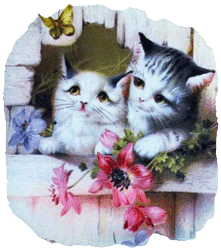 Kittens Hotpad & Coasters