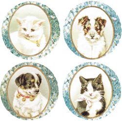 Dogs & Cats Mirror