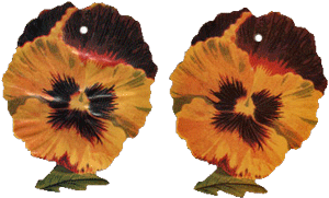 Pansy Tags