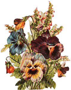 Pansy Bouquet Tag